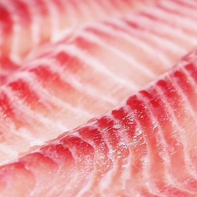 【那魯灣嚴選】頂級台灣鯛魚切片 2包(500g/包)含運